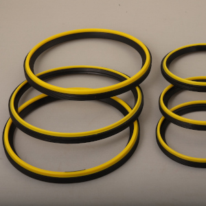 Dual Ring 2 - O Ring Manufacturers in India